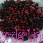 Crostata ai frutti di bosco (e lamponi) senza glutine per UNLAMPONELCUORE