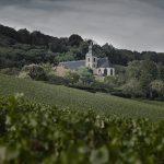 Dom Pérignon : lo Champagne che ha fatto storia diventa il vino perfetto per qualsiasi occasione